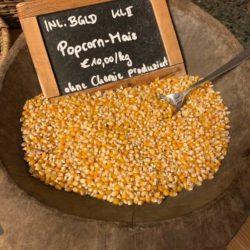 Familie Ziniel - Popcorn-Mais